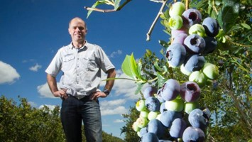 Watch: Blueberry Country - Commercial GM role image