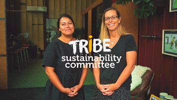 Watch: Creating a more sustainable workplace at Tribe image