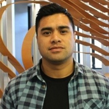 Lifting Māori & Pasifika representation at work image